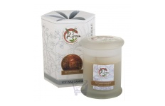 Soy Wax Container Candle (Autumn Harvest)- Kirra- 390g