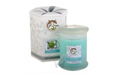 Soy Wax Container Candle (Cool Citrus)- Kirra- 390g