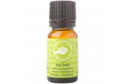 Tea Tree Essential Oil- Perfect Potion- 10ml