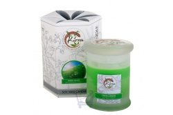 Soy Wax Container Candle (Fresh Grass)- Kirra- 390g