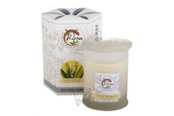 Soy Wax Container Candle (Lily of the Valley)- Kirra- 390g