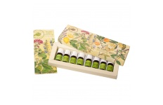 Aromatherapy Essential Oils Kit- Perfect Potion- 5ml x8