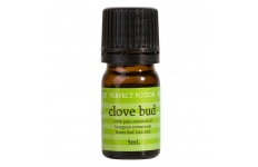 Clove Bud Essential Oil- Perfect Potion- 5ml