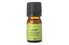 Ginger Essential Oil- Perfect Potion- 5ml