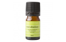 Rose Absolute Essential Oil- Perfect Potion- 2ml