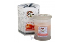 Soy Wax Container Candle (Applejack Peel) – By Kirra – 390g