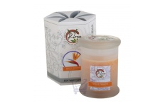 Soy Wax Container Candle (Bird Of Paradise)- Kirra- 390g