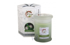 Soy Wax Container Candle (Lemon Myrtle)- Kirra- 390g