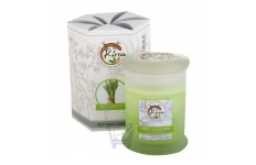 Soy Wax Container Candle (Sweet Lemongrass)- Kirra- 390g